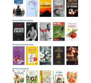 TOP 5 des livres les plus empruntés en 2015