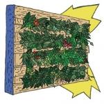 Atelier végétalisation : apportez votre touche de vert à la bibliothèque ! – Mercredi 28 juillet 2021 de 14h à 17h