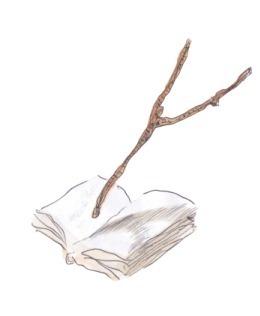 livresourcenl[1]